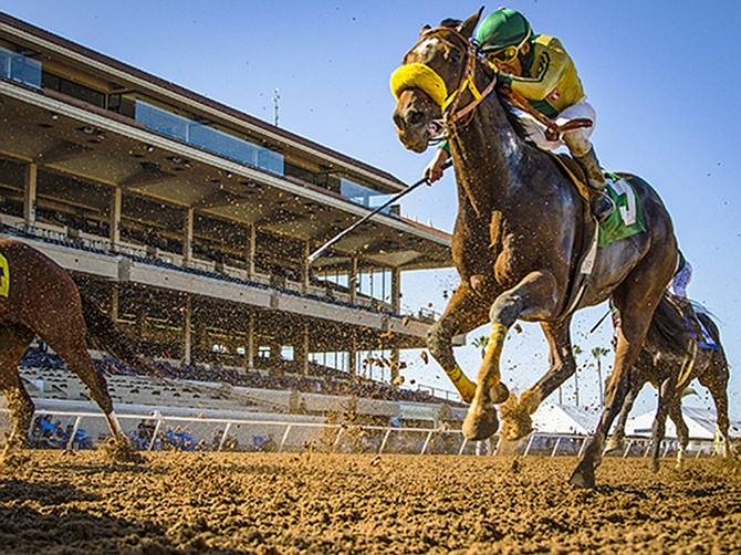 Photo courtesy of Del Mar Fairgrounds.