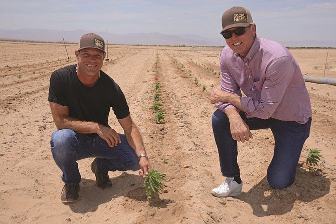 Cadiz and CEO Scott Slater teamed with with Glass House President Graham Farrar to produce hemp crops on 9,600 acres.