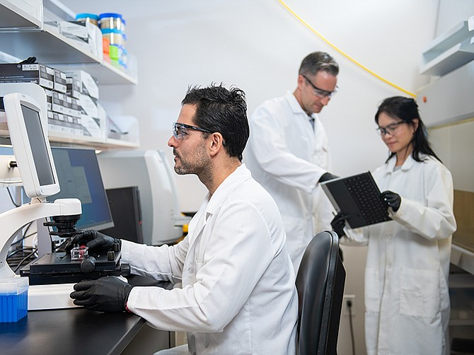 Photo courtesy of Erasca. Erasca is developing small molecule drugs and other therapies that target cancer-causing genes.